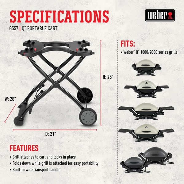 portable gas grill review